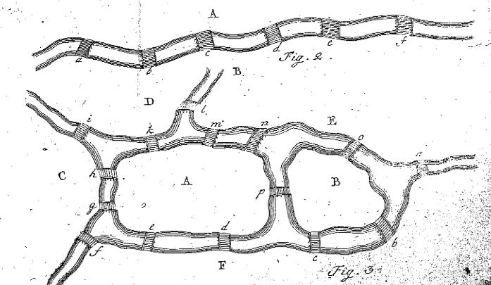Leonard Euler's Solution to the Konigsberg Bridge Problem
