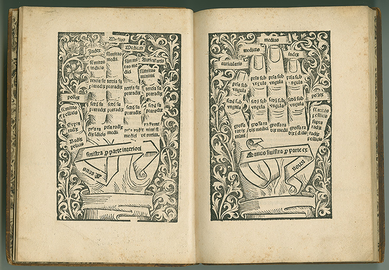 Images of labeled hands from Computus cum commento by Anianus, 1488