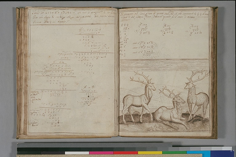 Computations and drawing of three stags from Libro diConti di Me by Antonio Venturini, 1686