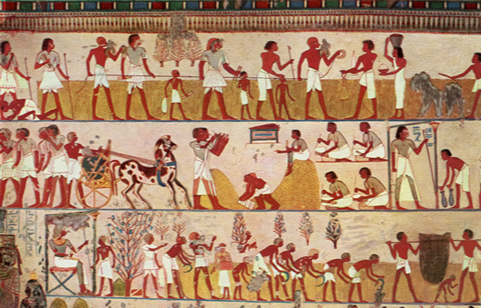 Wall painting of mathematical activities in Tomb of Menna.